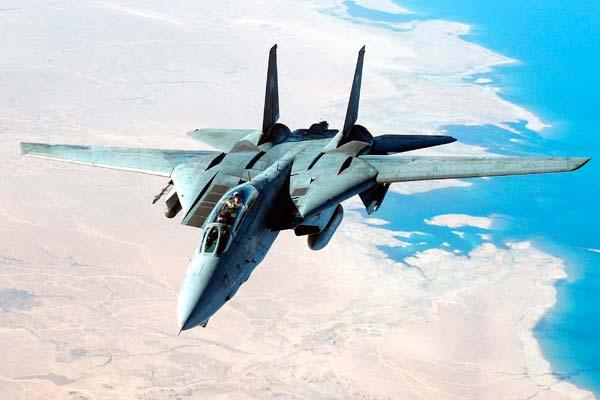 Avión caza Grumman F-14 Tomcat