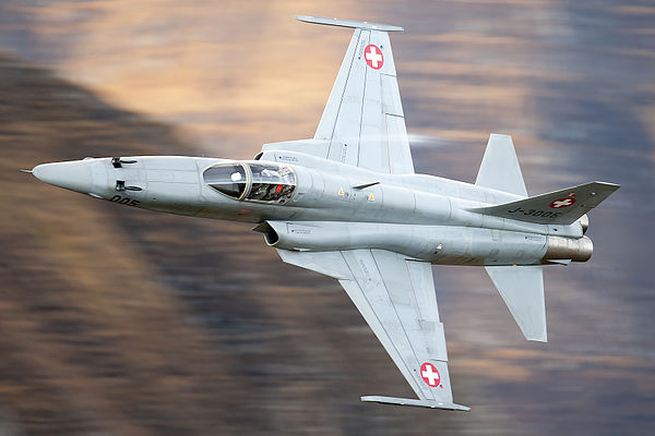 F-5 - Principal